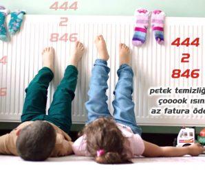 Bursa Gümüştepe Petek Temizleme Servisi Z. Teknik 444 95 87