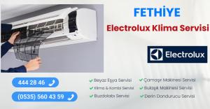 Fethiye electrolux klima servisi