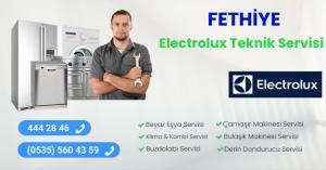 Fethiye electrolux teknik servisi