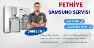 Fethiye samsung servisi