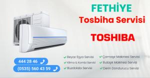 Fethiye toshiba servisi