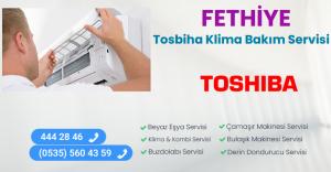 Fethiye toshiba klima bakım servisi