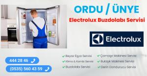 Ünye electrolux buzdolabı servisi