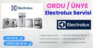 Ünye electrolux servisi