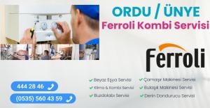 Ünye ferroli kombi servisi